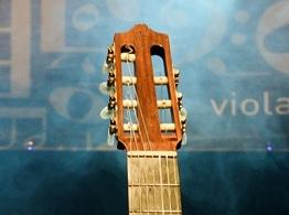 The Brazilian Seven String Guitar - Adam May